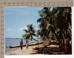 L'Afrique En Couleurs - Plage De Cocotiers / Africa In Pictures - Cocoa-nuts And Palms On The Beach - Folklore