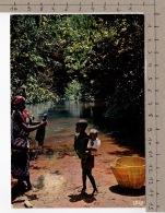 L'Afrique En Couleurs - Au Bord Du Marigot / Africa In Pictures - Along The Marigot - Folklore