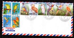 2000    R.D.C  Oiseaux Du Congo, 1855 / 1860 Sur Enveloppe - Papegaaien, Parkieten