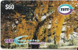 TRINIDAD & TOBAGO - Poui Tree, TSTT Prepaid Card $60, CN : E 003, Exp.date 27/04/09, Used - Trinidad & Tobago