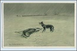 W3L79/ Der Retter In Der Not Sänitätshund Schäferhund Rotes Kreuz AK - Weltkrieg 1914-18