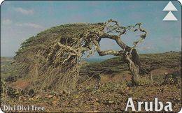 Aruba L&G Phonecard  Divi Divi Tree - Aruba
