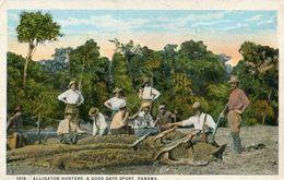 PANAMA(ALIGATOR) CROCODILE - Panama