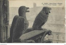 CPA 75 ( Paris ) - PARIS - Notre Dame - Chimere - Notre Dame De Paris