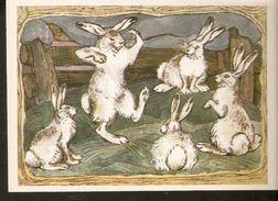 K. Russia USSR Soviet Postcard Russian Tales Hare - Brag Bragging Fairy Tale Story Animals Illustration By Alekseev - Fairy Tales, Popular Stories & Legends
