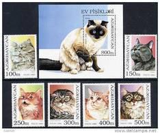 AZERBAIJAN 1995 Domestic Cats (6v + Block)  MNH / ** - Azerbaïjan