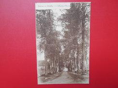 Waleffes :Le Château-L'Avenue D'Ormes (W1135) - Faimes