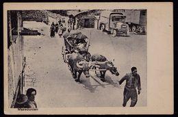 MAZEDONIEN - MACEDOINE - ATTELAGE ---- WWI GERMAN FELDPOSTKARTE ( XI ARMEE ) Nach DRESDEN ( 7.9.1916 ) - Macédoine