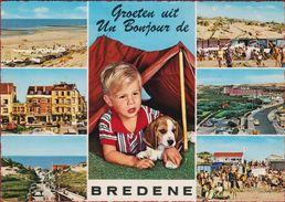 Grote Kaart Grand Format Bredene Groeten Uit Hond Dog Chien Hund Child Enfant Retro 1970 - Bredene
