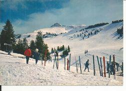74 - THOLLON LES MEMISES - Le Plateau Des Memises, Les Champs De Ski - Thollon