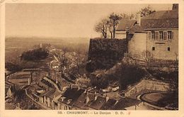 CPA - Chaumont Le Donjon - Great Stamp Cancel From Paris, Rue Danton - Chaumont