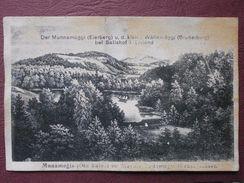 DER MUNNAMAGGI(EIERBERG) U.d.kleine WALLAMAGGI(BRUDERBERG) Bei SALISHOF I. LIVLAND - Estonie