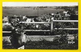 SAINTES Vallée De La Charente (Bergevin) Chte Mme (17) - Saintes