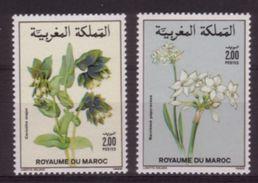 PAIRE NEUVE DU MAROC - FLORE MAROCAINE : CERINTHE MAJOR ET NARCISSUS PAPYRACEUS N° Y&T 1070/1071 - Plants