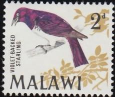 MALAWI - Scott #96 Cinnyricinclus Leucogaster / Mint NH Stamp - Malawi (1964-...)