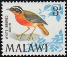 MALAWI - Scott #97 Cossypha Heuglini / Mint NH Stamp - Malawi (1964-...)