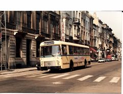 """BRUXELLES (1050) : Le Bus 95, Destination """"Heiligenborre"""", De Passage Avenue De La Couronne. Carte-Photo Rare. - Transport Urbain En Surface"""