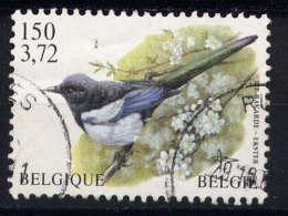 BELGIQUE - 2983° - PIE - Used Stamps