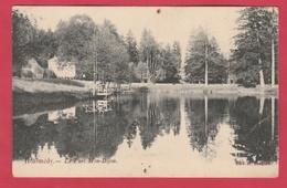 Malmedy - Le Parc Mon-Bijou ( Voir Verso ) - Malmedy
