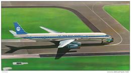 KLM K.L.M Royal Dutch Airlines Douglas Dc-8 Aircraft - 1946-....: Moderne