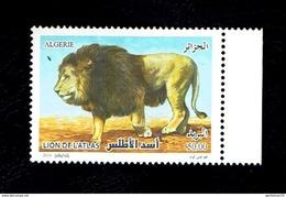 Algérie-Algeria-Algerien -la Nouvelle émission Le Lion De L'Atlas 14/12/2016 - Felini