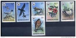 GRENADA WWF, Oiseaux, Yvert 790/96** Neuf Sans Charniere. MNH - W.W.F.