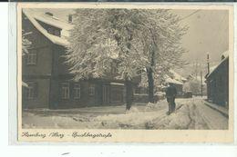 ALLEMAGNE ILSENBURG HARZ Buchbergstrage - Ilsenburg