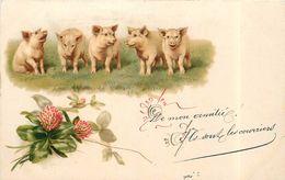 GROUPE DE COCHON - Trèfle Thème De La Chance (carte 1900 Illustrée). - Cochons