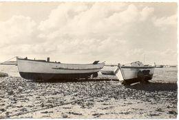 17. Port Des Barques. Marée Basse.  Cpsm Petit Format - Autres Communes