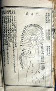 CHINE MEDECINE CHINOISE ACUPUNCTURE LIVRE DE MEDECINE EN CHINOIS GRAVURES D'ANATOMIE MEMBRES ET CORPS  VERS 1930/1950 - Livres, BD, Revues