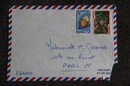 Timbre Sur Lettre De DOUALA à PARIS - Camerun (1960-...)