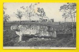 TOURY Pierre Druidique Train (Billard) Eure & Loir (28) - Autres Communes