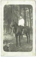 Carte Photo. Militaria. Camp Beverloo. Ecurie De L'Etat Major; 2/2 Grenadier. Cachet Léopoldsburg 1913. - Guerre, Militaire
