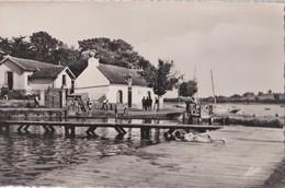 Carte 1950 Environs De Vannes : Golfe Du Morbihan : La Piscine De Conleau - Autres Communes