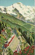 Railway Postcard Schynige Platte Bahn Bernese Oberland Switzerland Rack Mountain - Trains