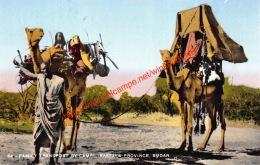 Family Transport By Camel - Kassala Province - Sudan - Soudan