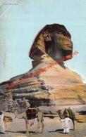 The Sphynx - Sphinx