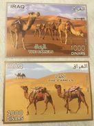 Iraq Camels 2013 Stamps MNH SS - Iraq