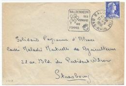 C617 - Daguin Illustré BALDENHEIM SES VERGERS SES POMMES - Bas Rhin - 1958 - - Marcofilia (sobres)