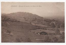 01 AIN - COLIGNY Hameau De Lorette Et La Côte De St Rémy - Frankreich