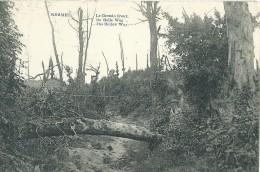 Heuvelland Kemmel Le Chemin Creux De Holle Weg The Hollow Way - 1922 - Heuvelland