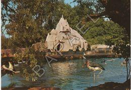 Romanèche-Thorins (71) - ''La Maison Blanche'' Parc Zoologique Des Condeminals - Le Rocher - Autres Communes