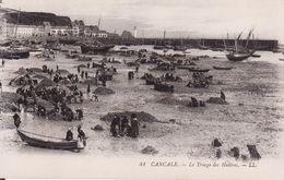 35 CANCALE - Le Triage Des Huîtres Très Animé N° 41 ( Ceci N'est Pas Une Reproduction ) - Cancale