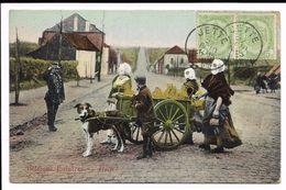 Belgique Laitiéres - Halt ! - Collections