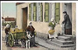 Belgique Laitiéres - Les Clientes - Collections