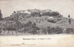 10950-S.ANGELO IN COLLE-MONTALCINO(SIENA)-1919-FP - Siena