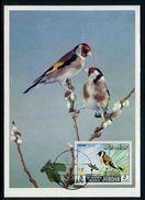 Jordanie - Carte Maximum 1969 - Oiseaux - Jordanie