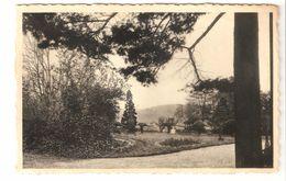 Hermalle-sous-Argenteau - Les Peupliers - Maison De Repos .... - Vue Du Parc - Phototon Brillant - Oupeye