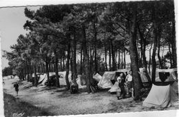 Rivedoux Plage Camping Sous Les Pins - France