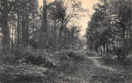 Genk  Genck  Chemin Des Fougères A Kelgterhof    X 1963 - Genk